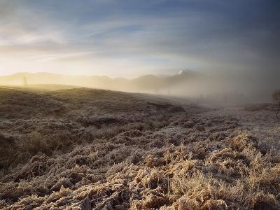 Frosted Fields and Misty Valley-Design Pics Inc-Photographic Print