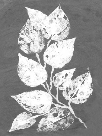 https://imgc.artprintimages.com/img/print/frosty-philodendron-ii_u-l-q11appr0.jpg?p=0