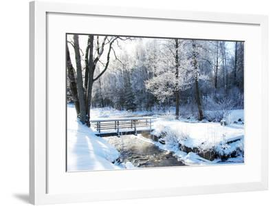 Frosty Tree-Cilla 2-Framed Photographic Print