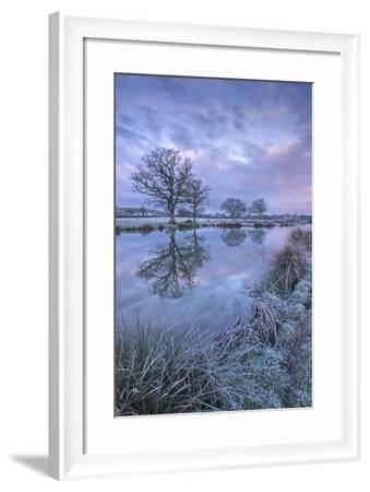 Frosty Winter Morning Beside a Rural Pond, Morchard Road, Devon, England. Winter (January)-Adam Burton-Framed Photographic Print
