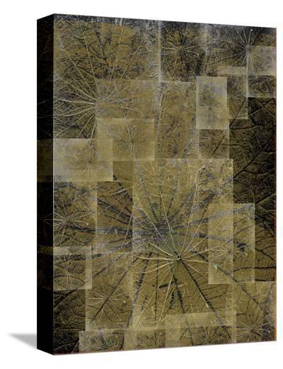 Frozen Green-Carolina Pecora-Stretched Canvas Print