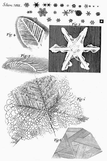 Frozen Materials Viewed by English Microscopist Robert Hooke, 1665--Giclee Print