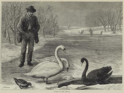 Frozen Out-Ebenezer Newman Downard-Giclee Print