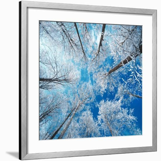 Frozen Sky-Philippe Sainte-Laudy-Framed Photographic Print