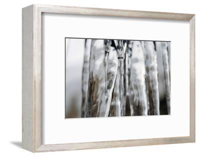 Frozen waterfall-Angela Marsh-Framed Photographic Print