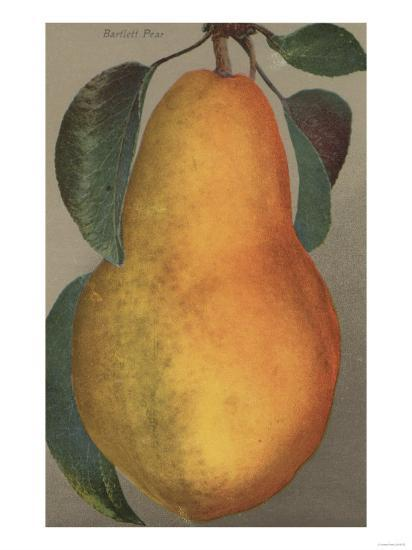 Fruit Chromo Lithograph of Bartlett Pear Fruit - California State-Lantern Press-Art Print