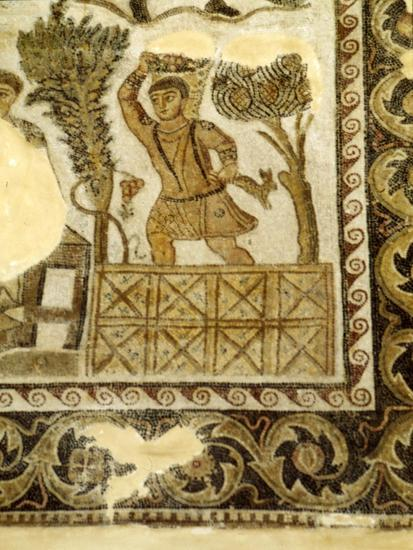 Fruit Collecting and grape treading Mosaic, c3rd century-Unknown-Giclee Print