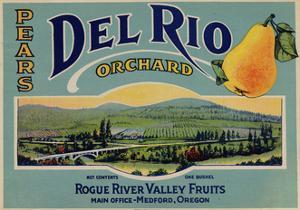 Fruit Crate Labels: Del Rio Orchard Pears; Rogue River Valley Fruits