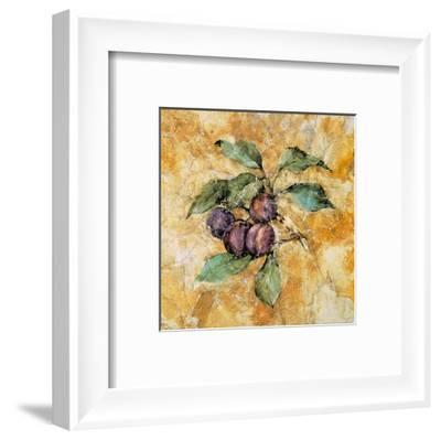 Fruit Frescos IV-Jenny Mayfeld-Framed Art Print
