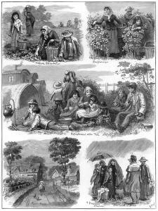 Fruit Gatherers, 1899