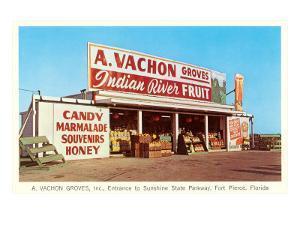 Fruit Stand, Ft. Pierce, Florida