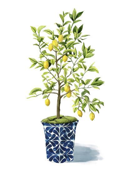 Fruit Tree II-Grace Popp-Art Print