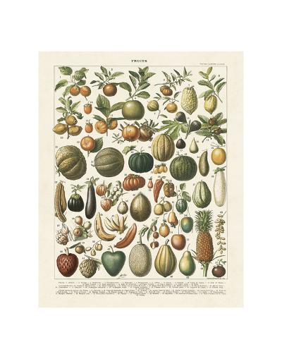 Fruits I-Adolphe Millot-Art Print