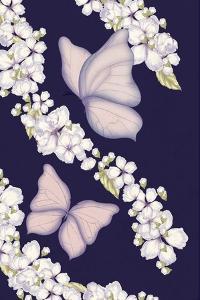 Butterflys by FS Studio