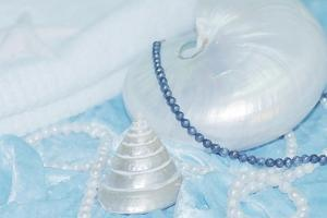 Shell with Blue and White Pearls by FS Studio