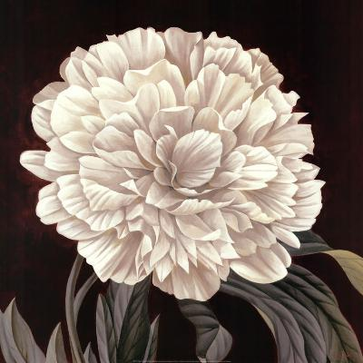 Full Bloom II-Keith Mallett-Art Print