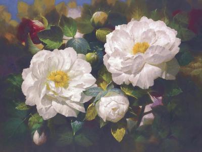 Full Blossom I-Bowmy-Premium Giclee Print