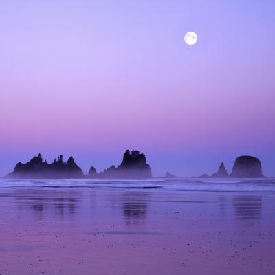 Full moon above seastacks, Olympic National Park, Washington, USA-Charles Gurche-Photographic Print