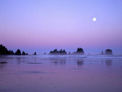 Full moon above seastacks, Olympic National Park, Washington, USA-Charles Gurche-Photographic Print