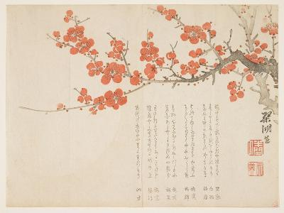 Full Moon and Plum Blossoms, C.1860- Kink?-Giclee Print