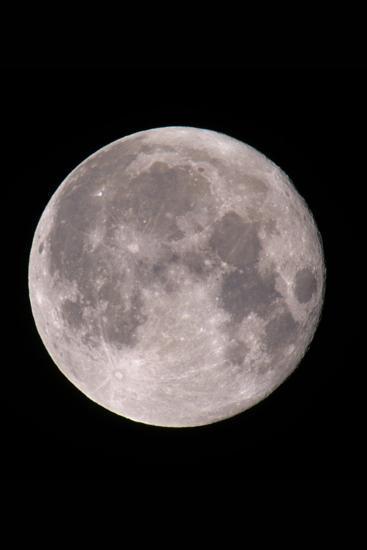 Full Moon In the Night Sky-David Nunuk-Photographic Print