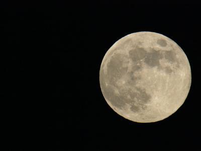 Full Moon-Arthur Morris-Photographic Print