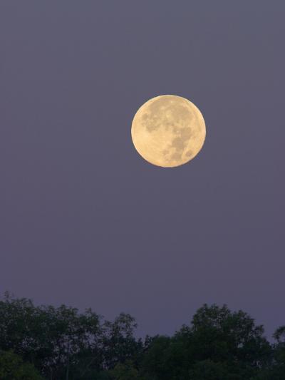 Full Moon-Glenn Bartley-Photographic Print
