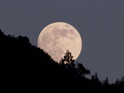Full Moon--Photographic Print