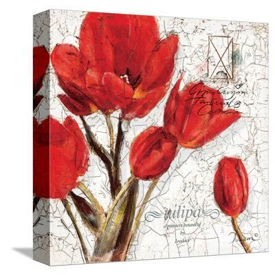 Full of Flowers-Joadoor-Stretched Canvas Print