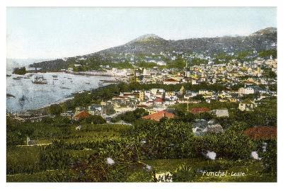 Funchal, Madeira, Early 20th Century--Giclee Print