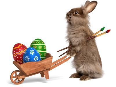 Funny Easter Bunny Rabbit With A Wheelbarrow And Some Easter Eggs-mdorottya-Photographic Print