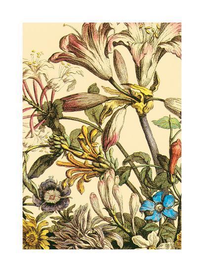 Furber Flowers III - Detail-Robert Furber-Art Print
