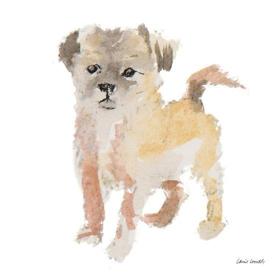 Furry Paws-Lanie Loreth-Art Print