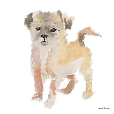 https://imgc.artprintimages.com/img/print/furry-paws_u-l-q19tw370.jpg?p=0