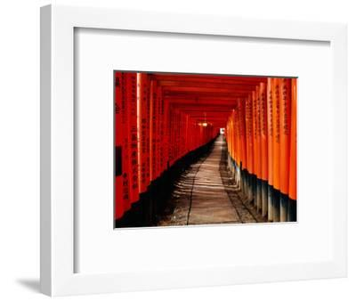 "Fushimi-Inari Taisha ""Torii Tunnels,"" Japan-Frank Carter-Framed Photographic Print"