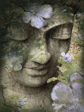 Inner Tranquility