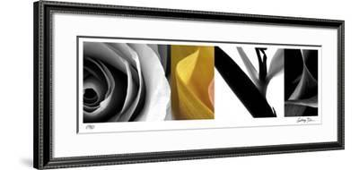 Fusion IV-Anthony Tahlier-Framed Giclee Print