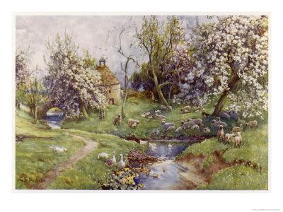 Picturesque Stream in the English Countryside with Geese