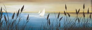 Shoreline I by G^ Gerard