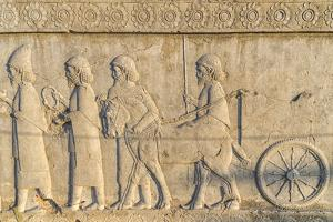 Apadana stairway facade, relief of the Achaemenids, Medes and Persians, Iran by G&M Therin-Weise