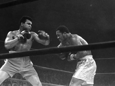 Muhammad Ali - 1967 by G. Marshall Wilson