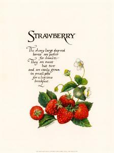 Strawberry by G^ Phillips