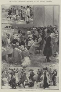 The Ladies' Coronation Dog-Show at the Botanic Gardens by G.S. Amato
