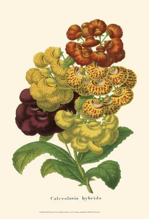 Hybrid Varieties I