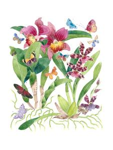 Butterflies and Orchids 2 by Gabby Malpas