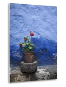 A Colorful Blue Wall and a Red Geranium in a Pot Inside the Santa Catalina Monastery by Gabby Salazar