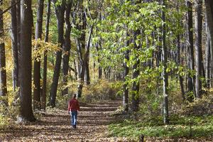 A Woman Walks on a Forest Trail in the Delaware Water Gap National Recreation Area by Gabby Salazar