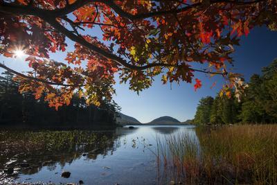 Colorful Foliage and Grasses around Eagle Lake in Autumn