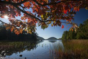 Colorful Foliage and Grasses around Eagle Lake in Autumn by Gabby Salazar