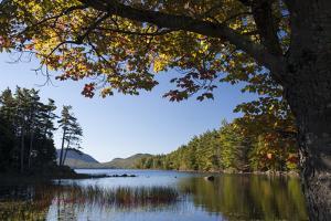 Eagle Lake and Fall Foliage by Gabby Salazar